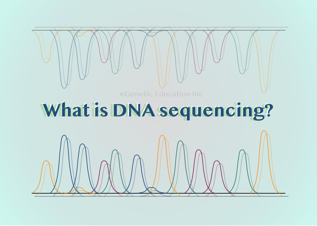 What is DNA sequencing?