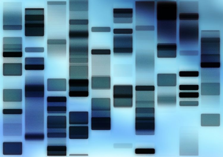 Paternity DNA testing- process, results, legal proceeding and cost
