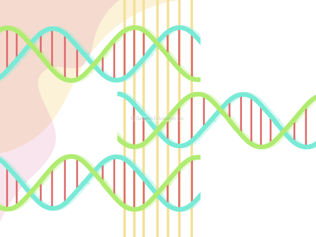 What is home DNA test?