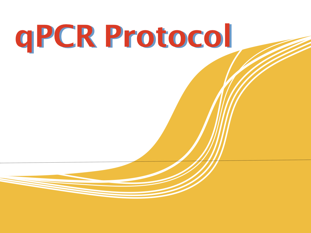 The protocol of qPCR using TaqMan probe and SYBR green dye