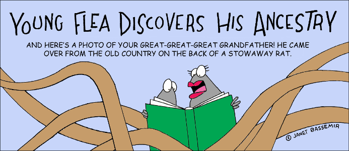 Flea.Ancestry.png
