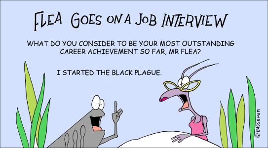 Flea.JobIntrerv.png