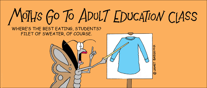 Moth goes to adult ed class