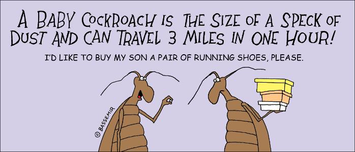 Roach.BabyShoe.png