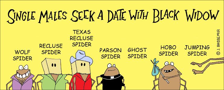 Spider.Widow.png