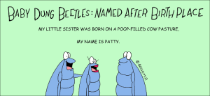 D.Beetle.Baby.Name.png