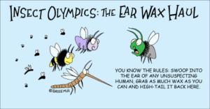 Flies.Wax.png