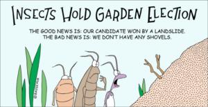 beetle-landslide-png