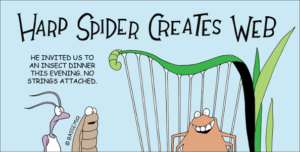 spider-harp-png