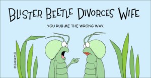 beetle-divorce-png