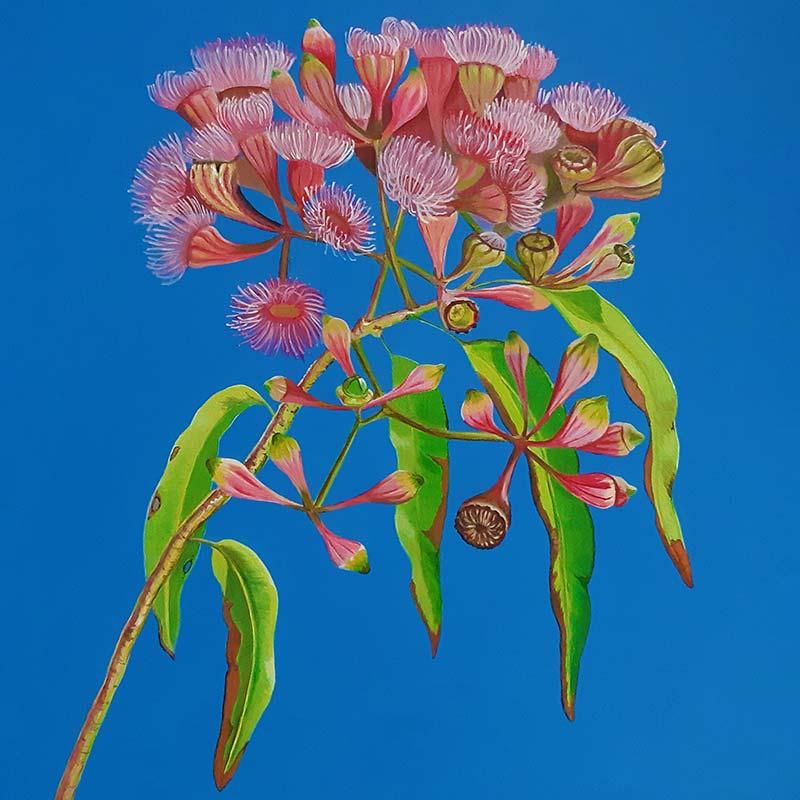 Art Classes Sunshine Coast Featured image