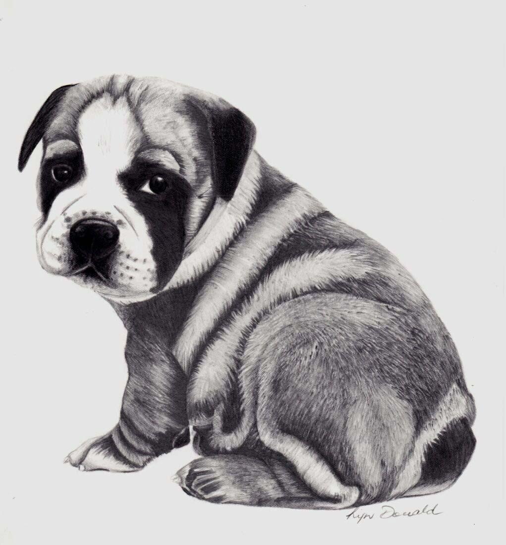 Baby Winston