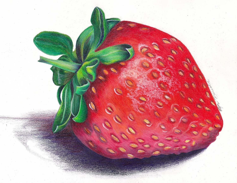 Coloured Pencil Course Sunshine Coast - Strawberry