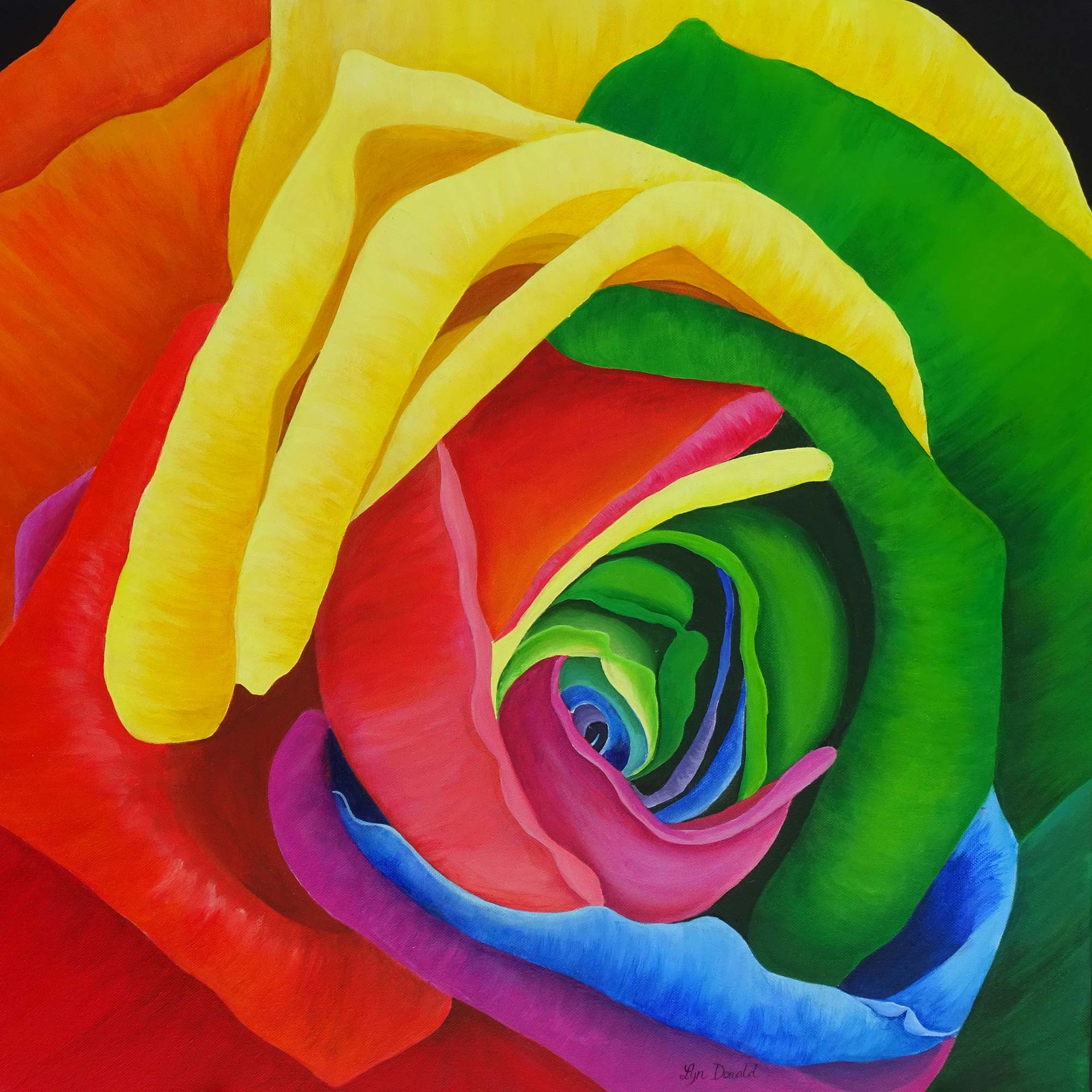Multi Rose
