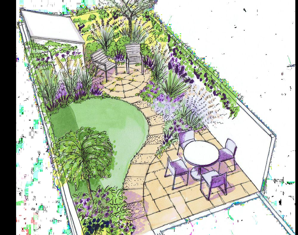 Backyard plan sketch