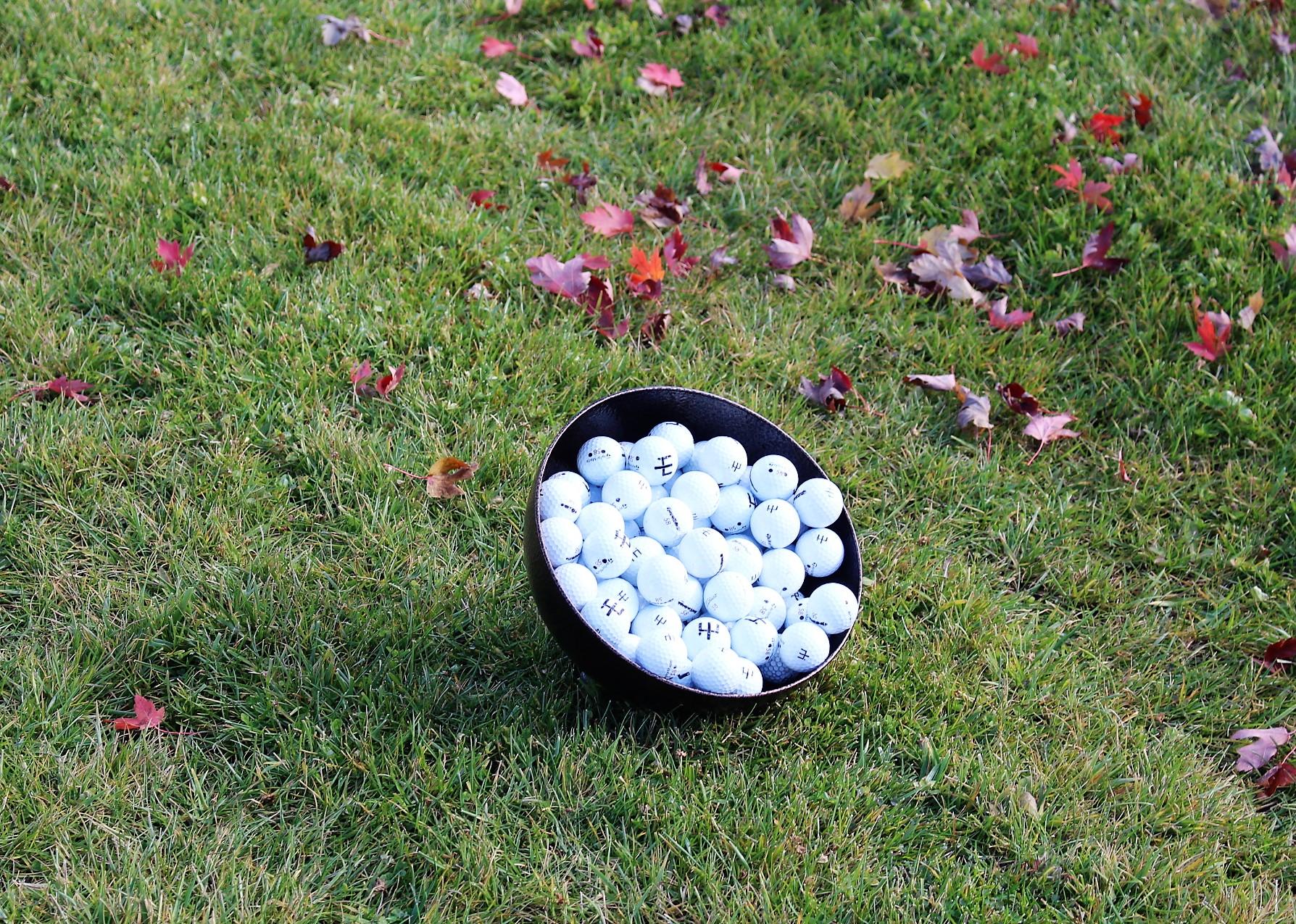 Ball-Bowl-Tilted-3