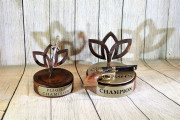 Battle Awards -Gailardia