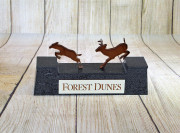 Deer-Trophy-Forest-Dunes-1