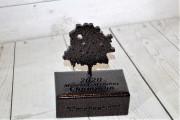 Member-Member-Trophy-Elmcrest-CC
