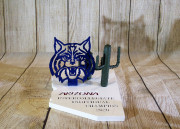 THE-UNIVERSITY-OF-ARIZONA-WILDCAT-AWARD