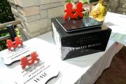 Trophies -children's hospital awards