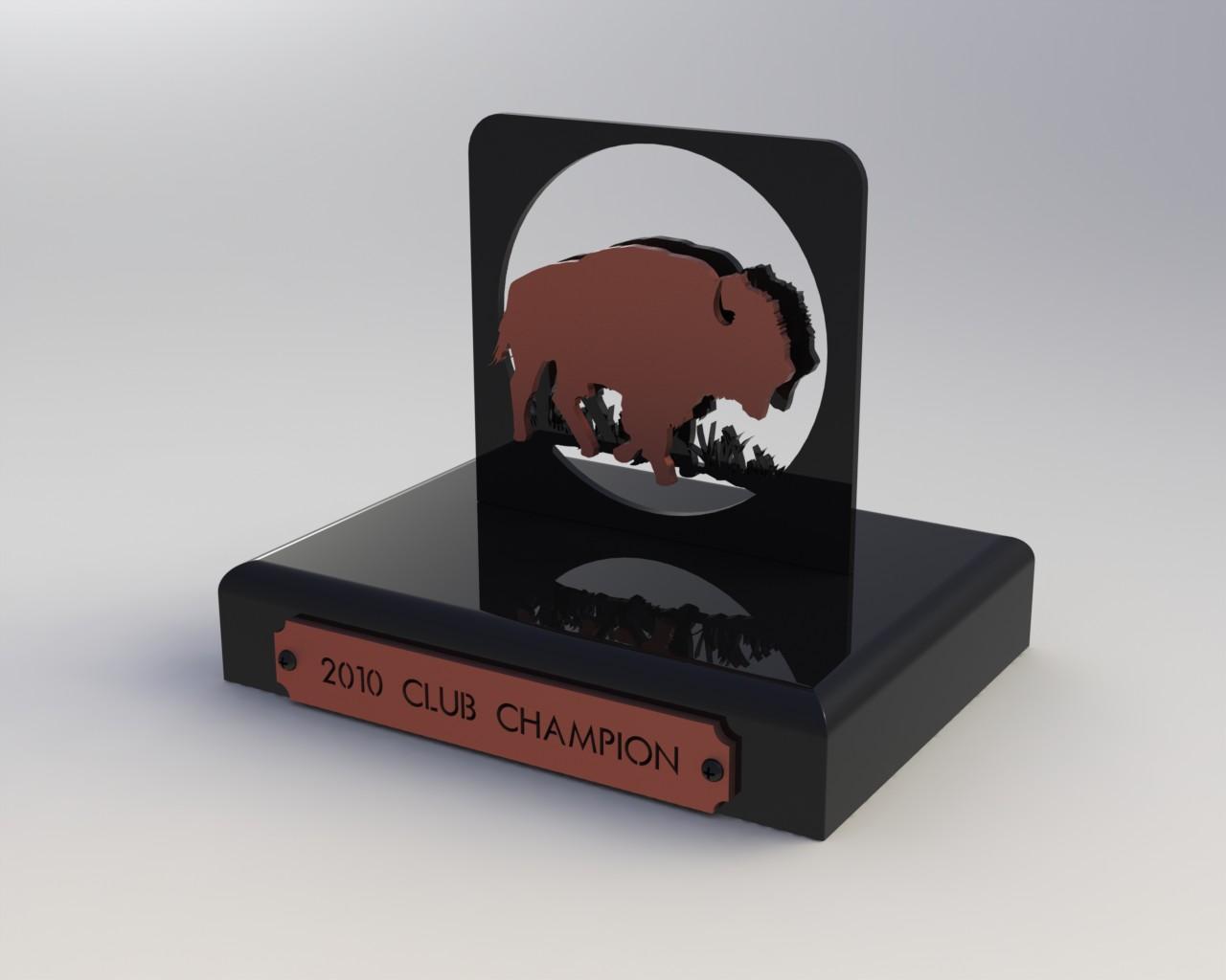 Custom Trophy