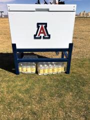 Insulated Cooler _University of Arizona