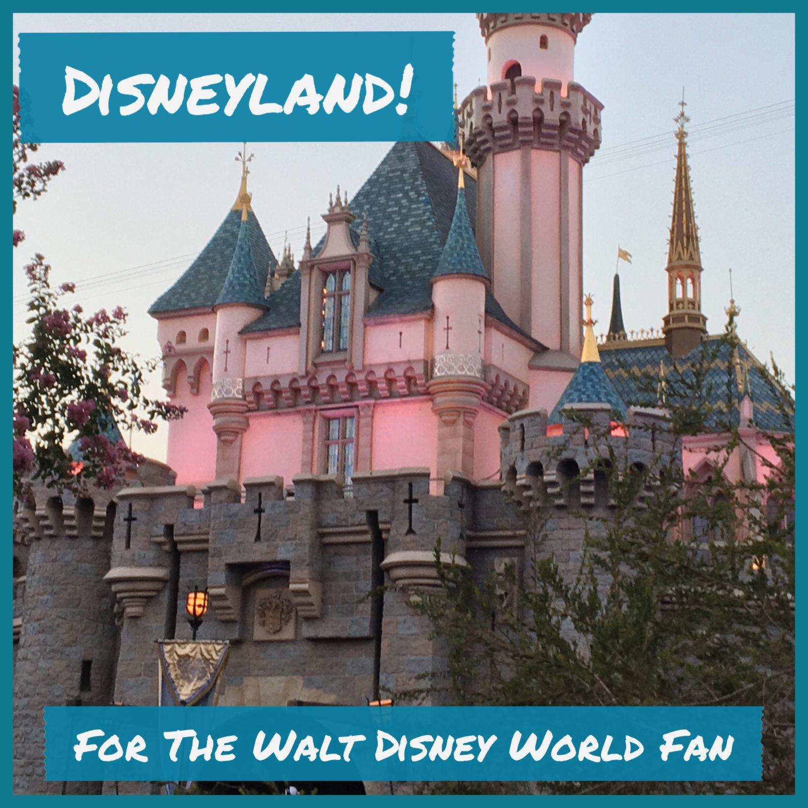 Disneyland for the Walt Disney World Fan