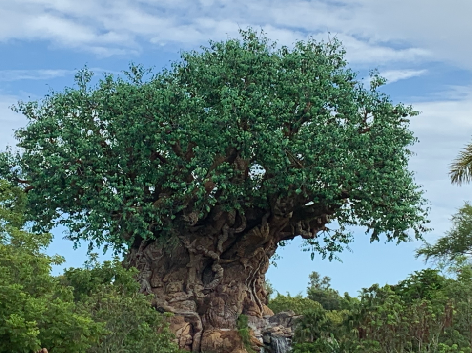 Tree of Life - Disney's Animal Kingdom - Our 5 Favorite Disney Architectural Marvels
