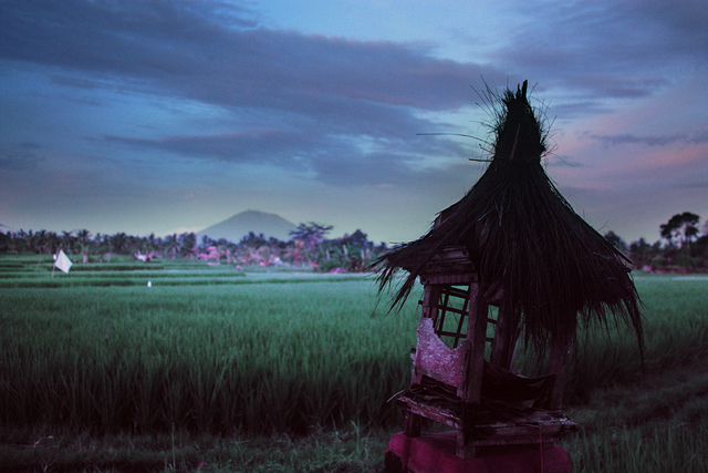 Cheap travel in Bali