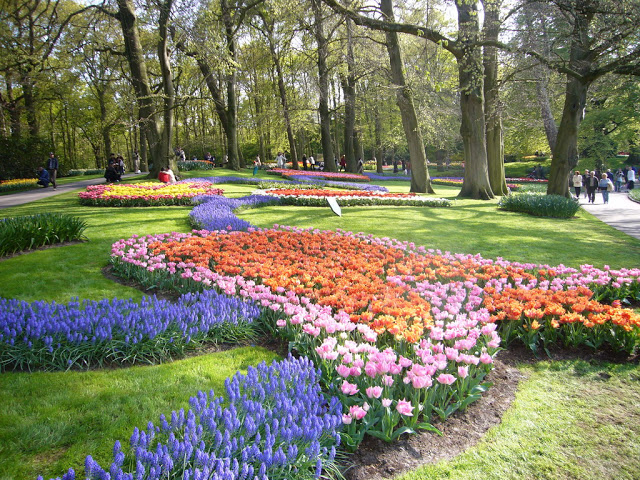 Must do in the Netherlands
