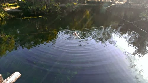 New Things: Swim In A Cenote
