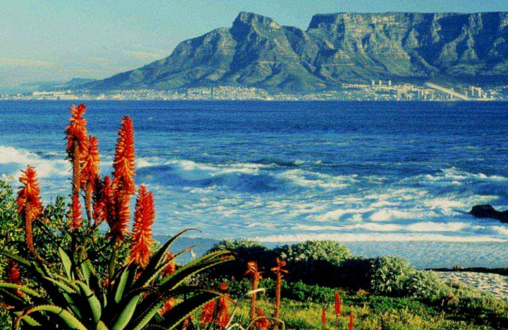 The Cheapskate Guide To: Cape Town