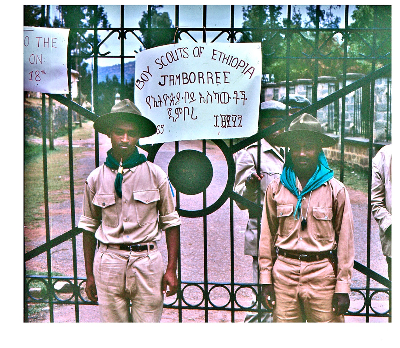 TMS Boy Scouts 1