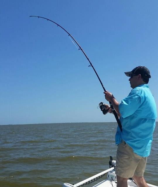 Galveston Bay Reel Selection