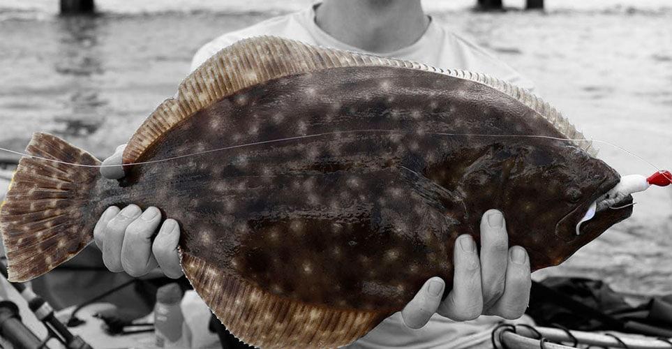 Flounder Fishing Group Charter in Galveston TX