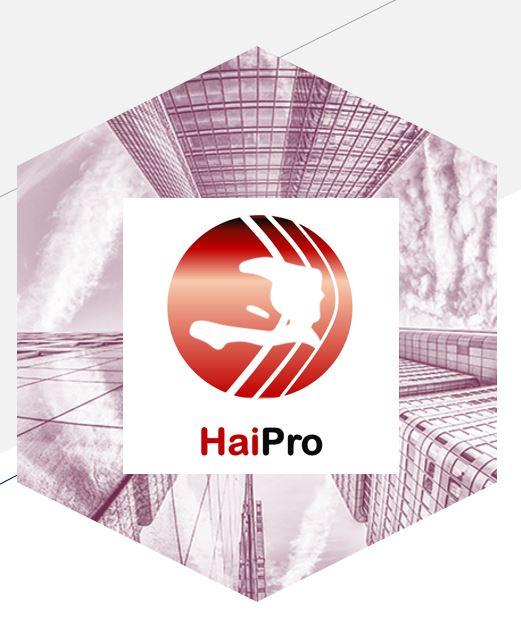 HaiPro Logo Full