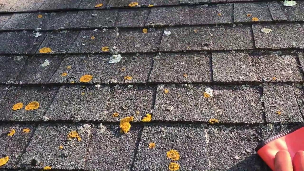 Soft Wash Cincinnait Spray Wash Cincinnati Pressure Washing Power Washing Roof Cleaning Graffiti removal