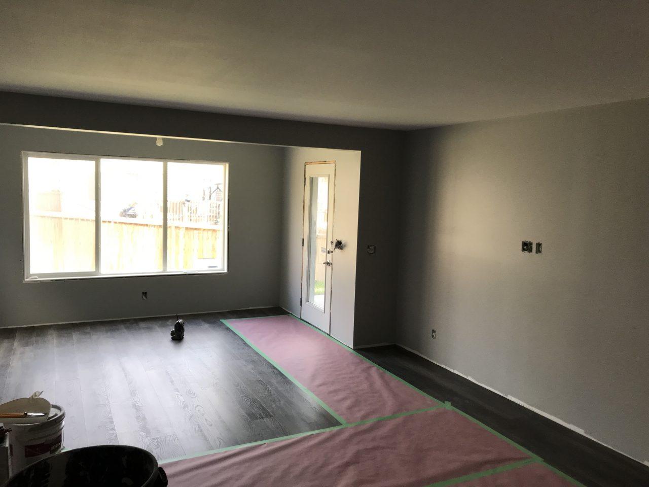 basement-development-project