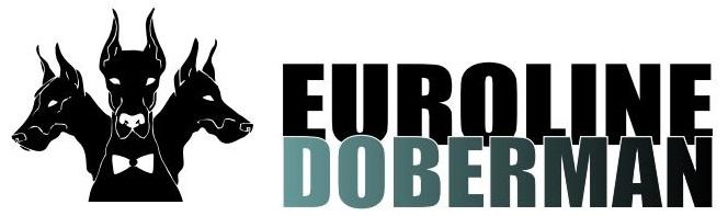 Euroline Doberman