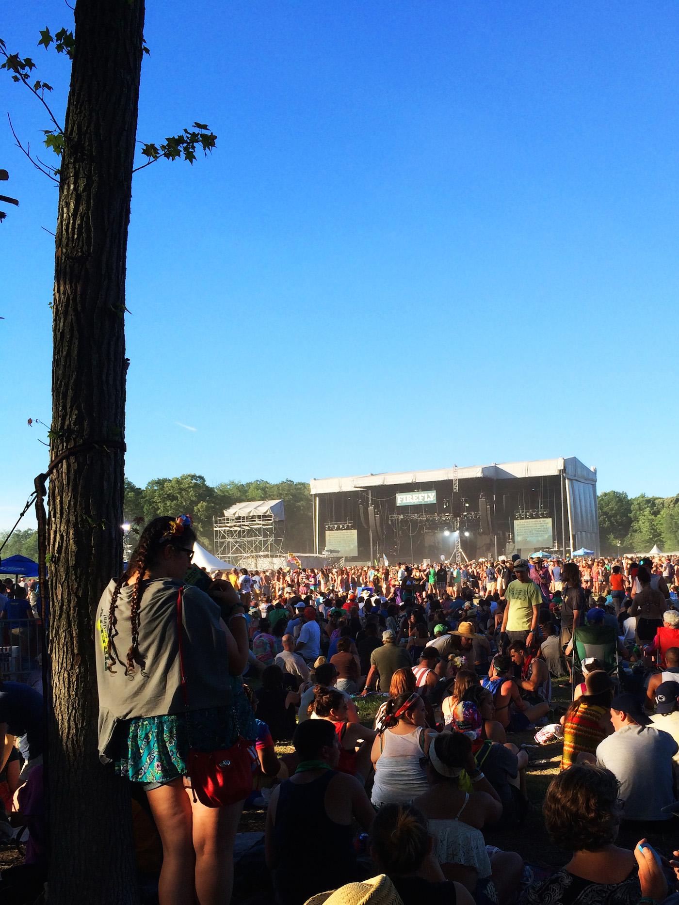 The Arctic Monkey's crowd