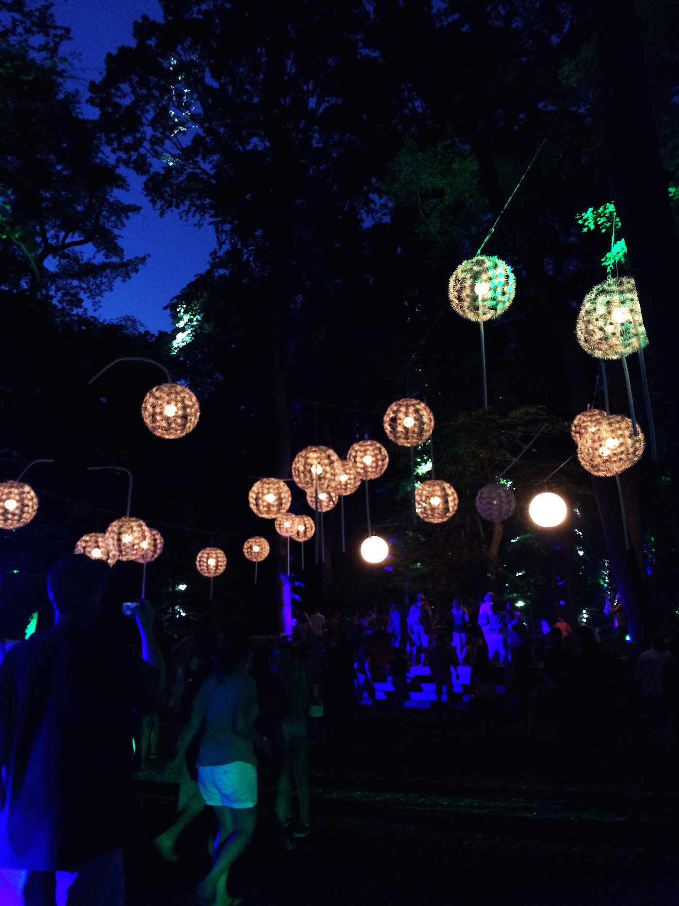 Dandelion Wishes at Firefly