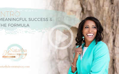 Meaningful Success and The Formula