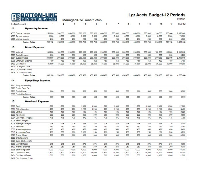 02-03-00-01c Projected (BUDGET) Income Statement  -  12 Periods
