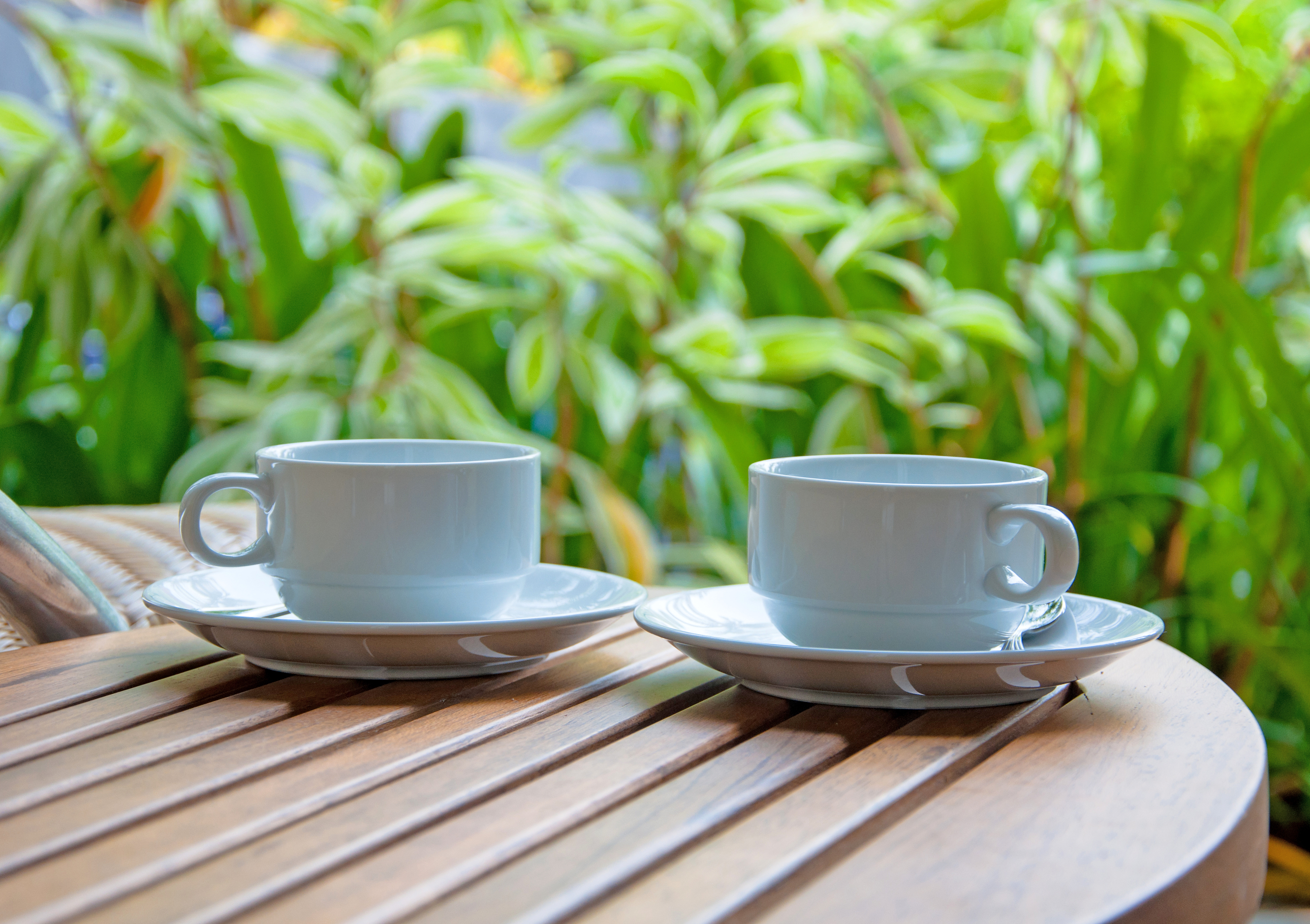 Two Coffee Cups on the table with nature background