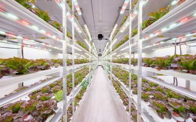 PR Newswire: AmplifiedAg Introduces Indoor Farm Platform and Disruptive Technologies, Positioning Company for Rapid Expansion