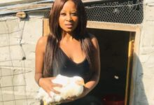 Photo of Poultry Farmer Sne Ngubane Receives Massive Support!
