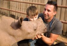 Rhino Africa - A traveller's Guide To Africa's Safari Destinations