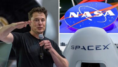 Billionaire Elon Musk Plans On Creating A City In Texas That Will Be Called Starbase
