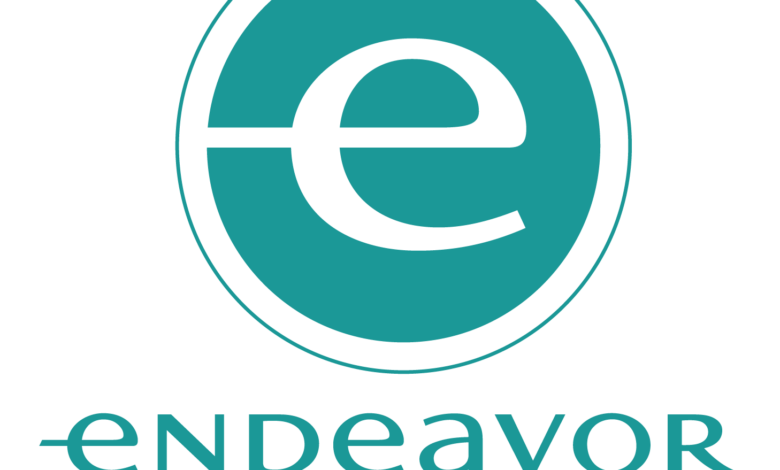 Endeavor Aims To Introduce Young Entrepreneurs To A Network Of Business Mentors
